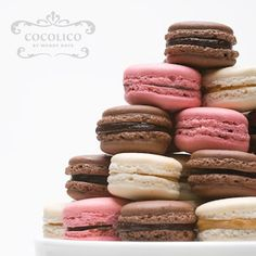 Macarons  www.cocolico.ca