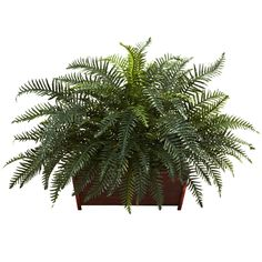 Bring a spring ambiance into your home with the Nearly Natural Artificial River Fern with Wood Planter. With lush green foliage in a gorgeous window box style planter, this decorative accent piece makes a great first impression in any room. Indoor Planter Box, Wood Planters, Planter Boxes, Silk Plants, Faux Plants, Plants Indoor, Artificial Plant Wall, Artificial Flowers, Fern Plant