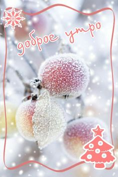 Winter Christmas Scenes, Christmas Images, Winter Scenes, Christmas Bulbs, Good Night, Good Morning, Blessed, Holiday Decor, Cards