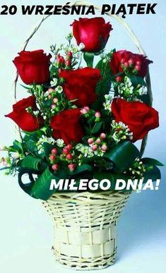 Bulion de trandafiri cu vene varicoase