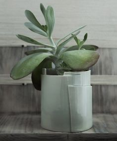 Large Porcelain Planter - Tiered Collection