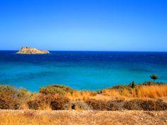 Wild nature and sea