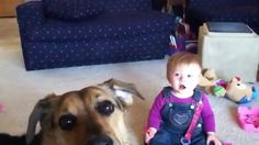 Baby,Dog VS The Bubbles