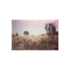❤ liked on Polyvore featuring pictures, backgrounds, photos, pic and image