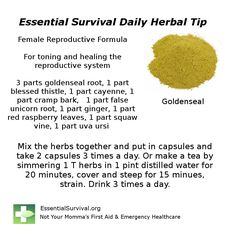 Dr. Christopher's Female Reproductive Formula helps tone and heal the reproductive system.
