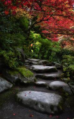 Arboretum Seattle