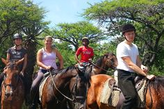 Ngibela Adventure Horse Trails in Winterton, Drakensberg  Come experience some of the diversity of South Africa on a 2-7 day horse-back tour. Ride through various farmlands nestled in the rolling hills of the Central Drakensberg and Northern Berg.  See the full WhereToStay.co.za advert for Ngibela Adventure Horse Trails http://www.wheretostay.co.za/ngibelaadventure/