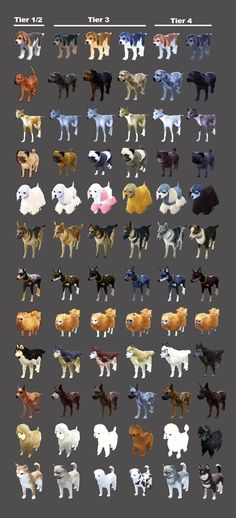 Black Desert Maid Costume and Pet Appearance Coupon Guide - Dulfy Dog Training Near Me, Dog Boarding Near Me, Pearl Shop, Guide Dog, Online Art, Maid, Character Art, Deserts, Desserts