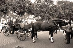 Ankunft des Brautpaares in einer schicken Kutsche
