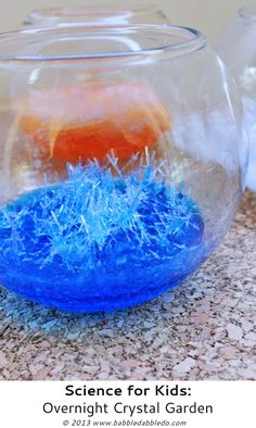 Science for Kids: Overnight Crystal Garden - Babble Dabble Do (uses epsom salts)