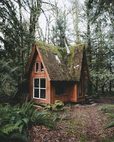 Mossy rooftop sets off a rustic tone on this tiny cabin Tag a friend you'd take here! . By @justindkauffman | http://pieceofwilderness.com