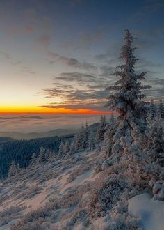 above the clouds Winter sunset . above the clouds Winter Photography, Landscape Photography, Nature Photography, All Nature, Amazing Nature, Natur Wallpaper, Winter Schnee, Winter Sunset, Winter Magic