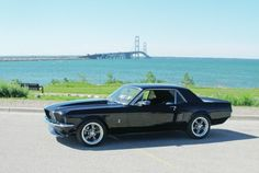 """1967 Ford Mustang Coupe """"Blue Belle"""" by Ron Heal! Ford Mustang 1967, Mustang Cars, Shelby Mustang, Ford Shelby, Ford Gt, Classic Mustang, Ford Classic Cars, Pony Car, Muscle Cars"""