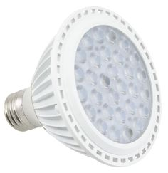 12W (2700K) LED Light Bulb
