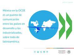 México en la OCDE es un puente de comunicación entre los países en desarrollo y los industrializados,sobre todo Latinoamérica. SAGARPA SAGARPAMX