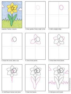 daffodil drawing step by step