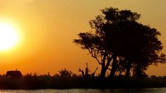 Sonnenuntergang am Chobe Fluss - berühmt für die größten Elefantenherden weltweit. Okavango Delta, Safari, Namibia, Celestial, Sunset, Outdoor, Adventure Tours, Natural Wonders, River