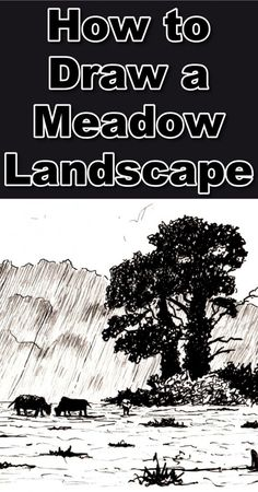 Learn how to draw a meadow landscape in pen and ink in this online art class tutorial by the Paint Basket