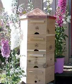 Hex Hive - Organic Beekeeping 101