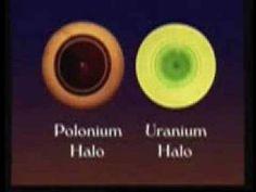 Polonium Halos: Unrefuted Evidence for Earth's Creation