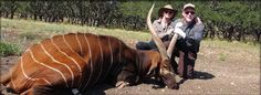 Texas Exotic Hunting | Exotic, Trophy, Big Game Hunting in Texas