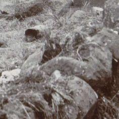Slachtoffers (Boeren of Engelsen) van de Tweede Boerenoorlog, anonymous - Search - Rijksmuseum Armed Conflict, War