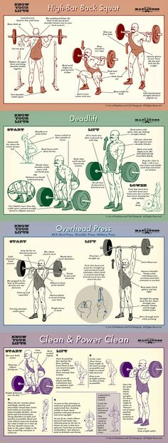 to Deadlift: An Illustrated Guide Know your lifts! Proper form for barbell squat, deadlift, overhead press and power clean.Know your lifts! Proper form for barbell squat, deadlift, overhead press and power clean. Nutrition Crossfit, Nutrition Education, Fitness Tips, Fitness Motivation, Fitness Memes, Funny Fitness, Gym Fitness, Weight Lifting Motivation, Health Fitness
