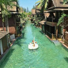 When is The Best Time to Visit Thailand? – Meloaku When is The Best Time to Visit Thailand? – Meloaku,Pinworthy: TRAVEL The very best time to visit Thailand actually depends on where in the. Vacation Places, Vacation Destinations, Dream Vacations, Holiday Destinations, Thailand Destinations, Vacation Ideas, Australia Destinations, Dream Vacation Spots, Beach Vacations
