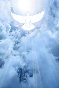 images of holy spirit dove Images Ciel, Heaven Pictures, Heaven Tattoos, Première Communion, Pictures Of Jesus Christ, Christian Pictures, Saint Esprit, Prophetic Art, Biblical Art