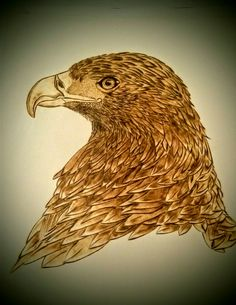 Pyrography on paper Eagle. Muisje