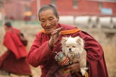 This photo taken on April 4, 2013 shows an elderly Buddhist nun carrying her dog in Seda Monastery, the largest Tibetan Buddhist school in the world, with up to 40,000 monks and nuns in residence for some parts of the year. Seda, known to Tibetans as Serthar is located in Ganzi prefecture in the west of Chinas Sichuan province and has become a hotbed of protests and violence since the Tibetan uprisings of March 2008.   http://avaxnews.net/appealing/Seda_Monastery.html