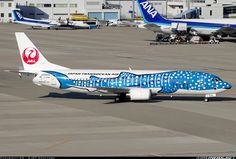 Japan TransOcean Air - JTA JA8939 Boeing 737-4Q3 aircraft picture