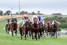 Winning Horse Racing Day