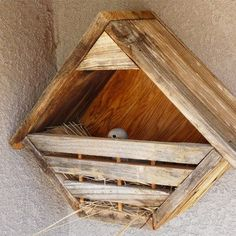Rustic nesting shelter for robins morning doves and other for Dove bird house plans