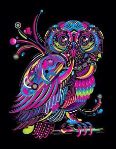 Neon owl.