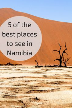 5 of the best places to see in Namibia 5 der besten Orte in Namibia zu sehen – Afrika Cool Places To Visit, Places To Travel, Travel Destinations, Camping Places, Travel Tickets, Future Travel, Africa Travel, Travel Goals, Travel Around