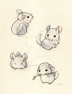 Chinchillas by WhisperToYouu, The Effective Pictures We Offer You About Exotic pets endangered species A quality picture Cute Animal Drawings, Animal Sketches, Cute Drawings, Drawing Sketches, Cute Dog Drawing, Deer Drawing, Baby Drawing, Maus Illustration, Art Du Croquis