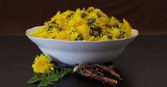 A Yummy Collection Of Dandelion Recipes To Try Out. The health benefits of dandelion include relief from liver disorders, diabetes, urinary disorders. Tea Recipes, Coffee Recipes, Healthy Recipes, Recipes Dinner, Herbal Tinctures, Herbalism, Dandelion Coffee, Dandelion Recipes, Dandelion Benefits