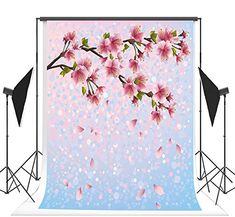 8x8FT Vinyl Photography Backdrop,Floral,Daisies Roses Modern Buds Background for Selfie Birthday Party Pictures Photo Booth Shoot