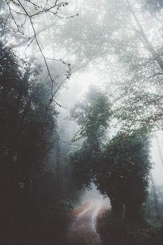 Moody Nature — elenamorelli:   { how soon is now }