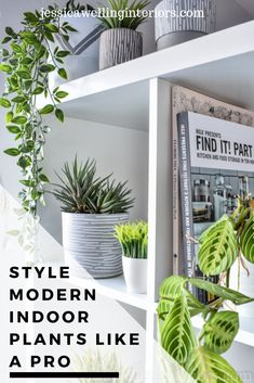 How to Style Indoor Plants: 6 Designer Tips Modern houseplants are a must-have! Learn to style indoor plants like a pro with these 6 simple tips on pots, placement and plant choice. Indoor Plant Pots, Indoor Planters, Hanging Planters, Indoor Gardening, Gardening Tips, Faux Plants, Small Plants, Ikea Presents, Diy Design
