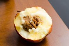 De ce rămân vișinii și cireșii fără frunze în mijlocul verii | Paradis Verde Paradis, Honeydew, Ethnic Recipes, Food, Agriculture, Diet, Plant, Essen, Meals