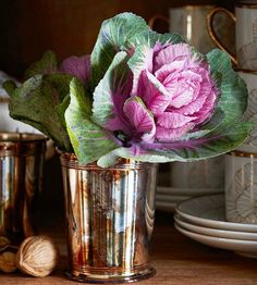 Fabulous Fall Decor - Ornamental Cabbage