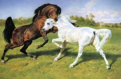 The Duel - Rosa Bonheur I have a signed etching of this, I love it.