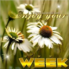 New Week Quotes, Hug Pictures, Hug Images, Happy New Week, Good Week, Hug Me, Best Graphics, Give It To Me, Tags