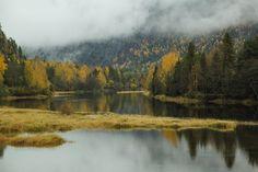 Otono en Noruega 2014 Bergen, Oslo, Mountains, Nature, Travel, Norway, Paisajes, Naturaleza, Viajes