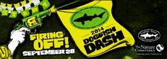 Dogfish Dash