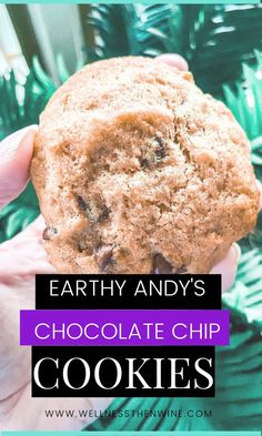 Repin and click for an amazing vegan, gluten-free, and plant-based chocolate chip cookie recipe! Vegan Chocolate Chip Cookies, Plant Based Breakfast, Healthy Sweet Treats, Breakfast Options, Plant Based Recipes, Earthy, Cookie Recipes, Easy Meals, Good Food