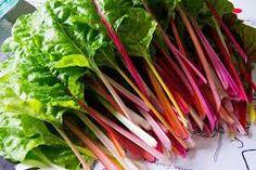 Snijbiet: wwer zo'n vergeten groente die nooit vergeten had mogen worden