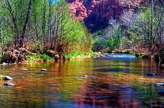 Sedona Photograph - Sedona From A Different Point Of View by Thomas  Todd